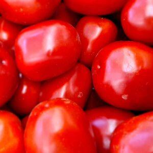 Pomodori romanelli