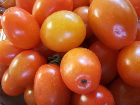Pomodori datterini arancioni