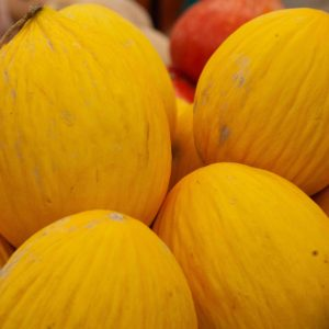 Meloni gialli costarica