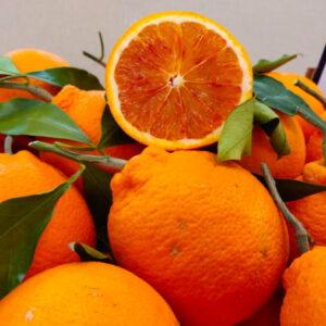 Arance tarocco in foglia