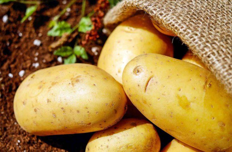 Come conservare le patate per evitare i germogli