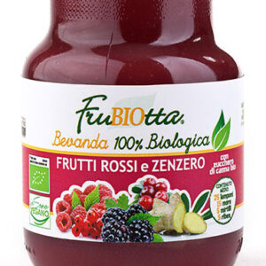 Bevanda frutti rossi e zenzero 100% BIO D'Alessandro (200ml)