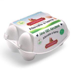 Uova 100% Abruzzesi (Confezione da 6) 1