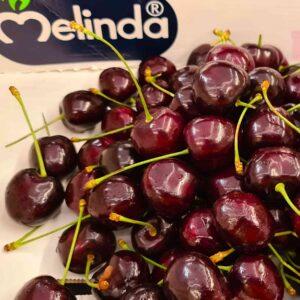 Ciliegie Melinda Trentino